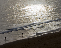 Continue reading Six Photographs: South Devon Cliff Walk [Part 2]