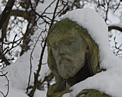 Continue reading 6 Photographs:  Fulham Palace Road Cemetery in the Snow